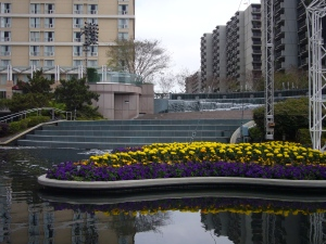 Water Gardens at California Plaza in Bunker Hill